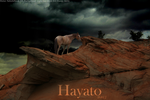 Hayato by illusivedreams