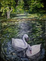 swans by rikarty