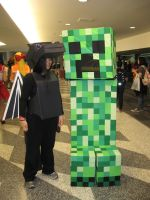 Minecraft Creeper and Dragon at Fanime 2014 by plastik-panda