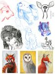 2014 Sketches 05 by kookybat