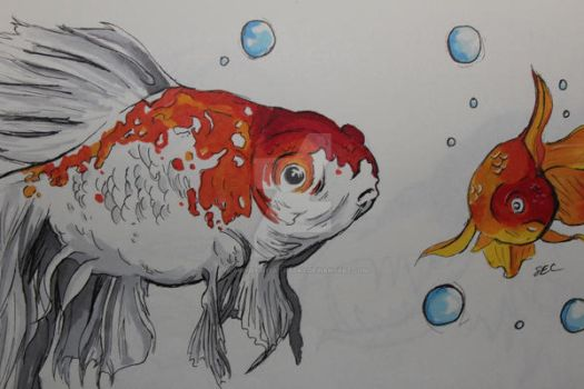 Goldfishies by Clairvoyantartistry
