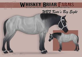 Katepercheron by Rising-High-Ranch
