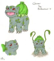 Pokemon OC: Clover by SilverRacoon