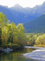 Gold Creek in October by Westcoastspirits