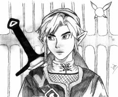 Twilight Princess: Link by FabyxErzaxGray