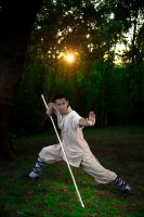 Shaolin Kung Fu in Plumstead Bostol Woods by atmp