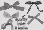 Bows brush set by shoe-fly