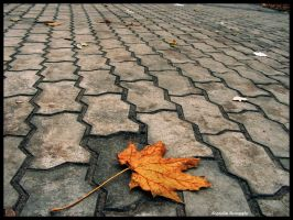 No Leaf Clover by PixelaTer
