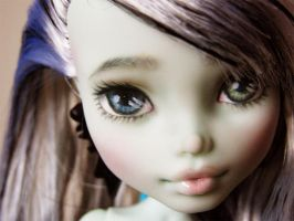 monster high frankie repaint 1 by hellohappycrafts