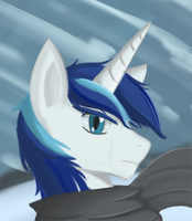 Shining, in snow. by ArcheoPony