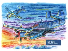 SF-324 by TheXHS