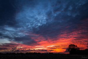 Dramatic Sunset by JackBosworth