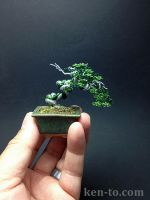 Green deadwood wire bonsai tree by Ken To by KenToArt