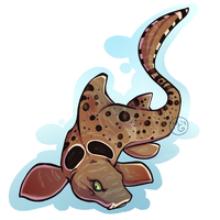 Shark Week 2013 - Epaulette Shark by tea-tiger