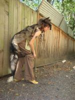 Black wolf totem costume by lupagreenwolf