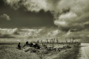Desolation by Anachronist84
