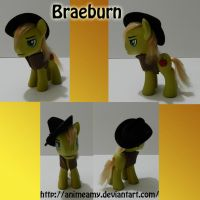 Braeburn by AnimeAmy