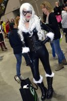Black Cat Cosplay at 2015 Sydney Supanova by rbompro1