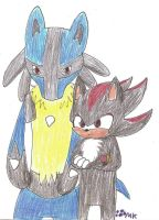 Lucario and Shadow by fangs211