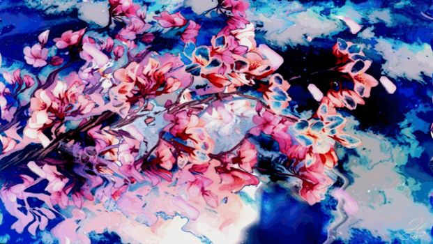 Petals falling, reflections in water by MangaMad86