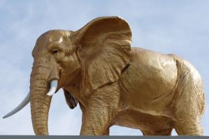Gold Elephant Statue Stock 1 by chamberstock