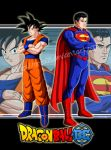 Goku vs Superman by orco05