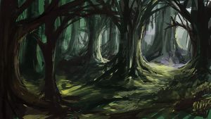 Gloomy Forest by jbrown67
