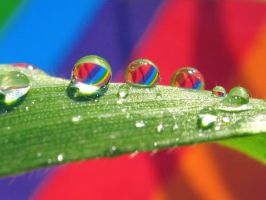 Rainbow Droplets by Piombo