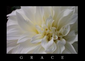 Grace by Findae