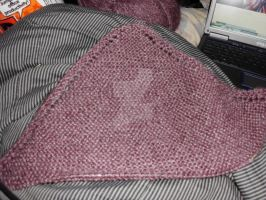 Blanket WIP- Progress by Ryuus-Wardrobe