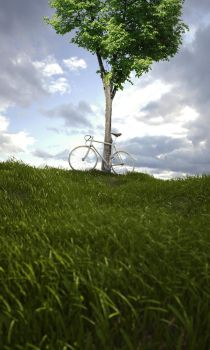 Bicycle by W-Art3D