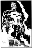Punisher at rest by BillReinhold