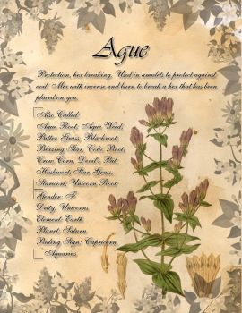 Book of Shadows: Herb Grimoire - Ague by CoNiGMa