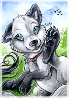 ACEO_White by Kyuubreon