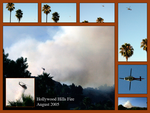 Hollywood Hills Fire by spyed