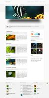 Glowin wordpress theme by stewie17