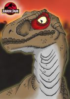 Raptor Coloriert by Vic-the-Mouse