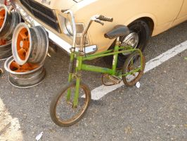 Old bike / Bicicleta velha by JulioCarlo