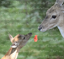 Fawn with flower for mother by Leopardenschweif