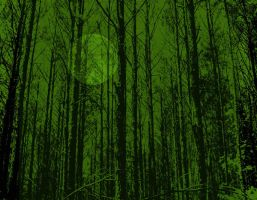 The Dark Woods by yeagerspace