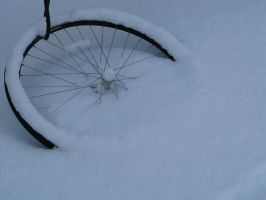 Forgotton in the Snow by Tustin2121