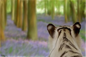 Tiger Woodland  by CacaArt