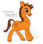 Blooming Heart by archimer