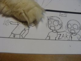 Zak Owned by Chazia