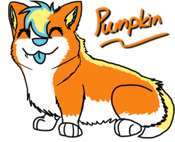 Pumpkin by DJC631