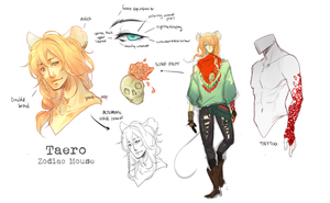 :TAERO: Design Sheet by Chuuchichu