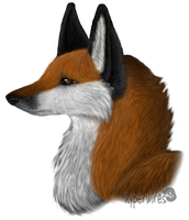 Vixett's Profile by NoelleMBrooks