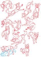 Canine Poses by Spakitty