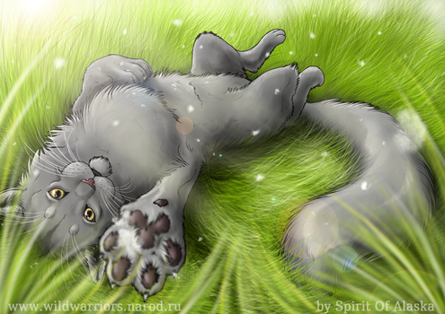 Graystripe by Spirit-Of-Alaska