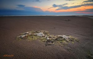 sandy beaches by hotonpictures